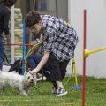 Aprender jugando: comunicate con tu perro