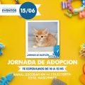 ¡Primer Jornada de Adopción de gatitos en Puppis Maschwitz!