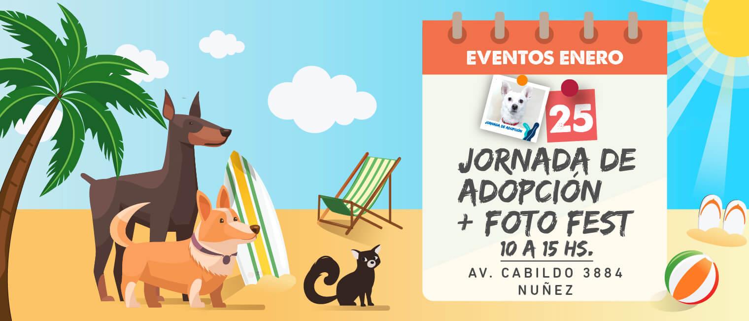 Adoptá en Puppis Cabildo